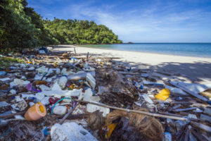 Plastikmüllproblem