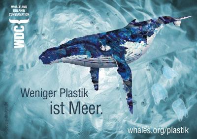 Nachhaltige Adventskalender ohne Plastik und Müll